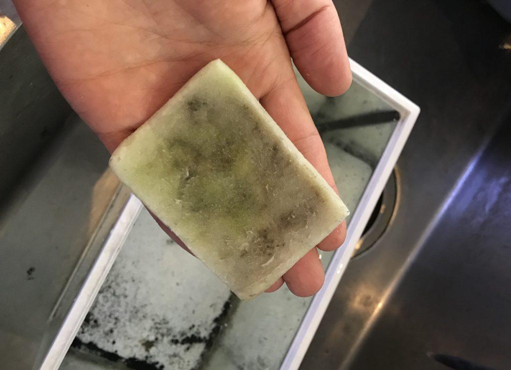 ◆たくさんある水槽の掃除…どのようにコケ取りしているのか。こだわりの擦り方とは。