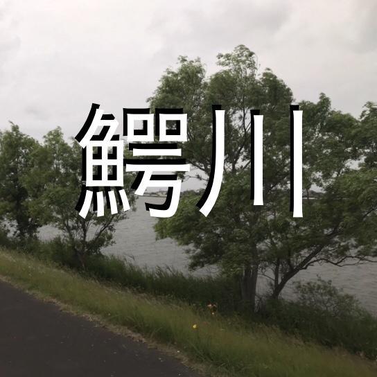◇『sakanaの日常』雨の日の作戦会議。