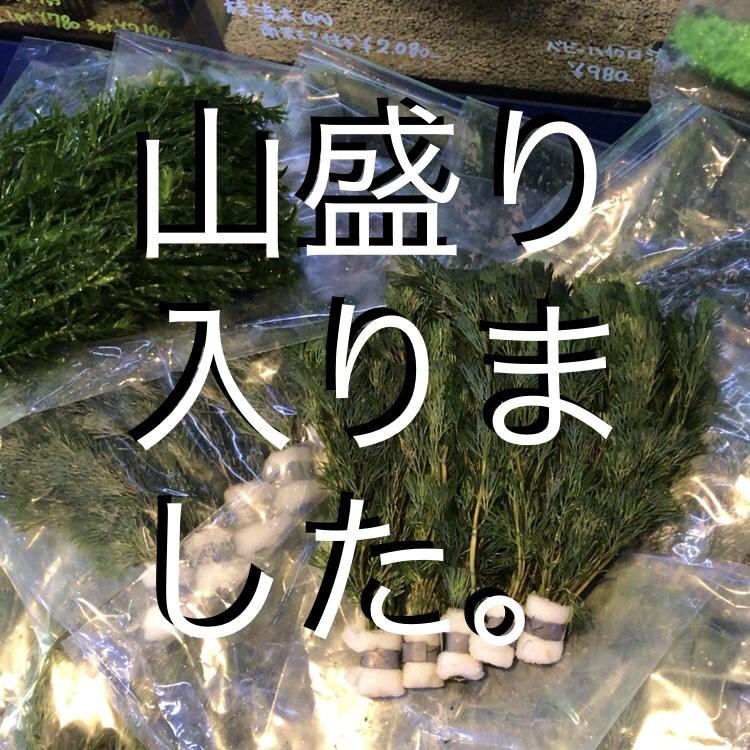◇『sakanaの日常』こんなふうに届いてます。毎回ドキドキさせられます。