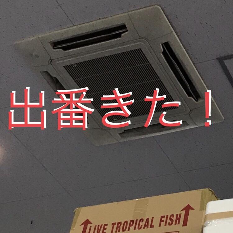 ◇『sakanaの日常』天からの助け??