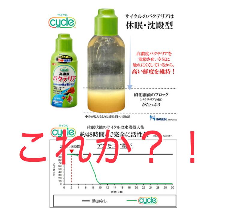 ◆GEXベストバイオブロックと、サイクルってどっちが効果が良いのですか?バクテリアを入れて飼育環境をよくする。