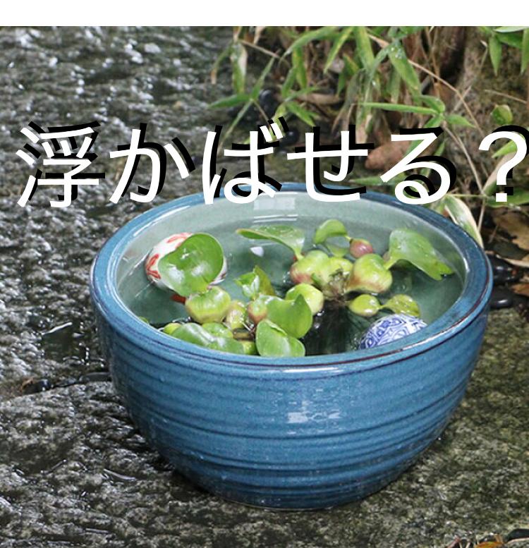 ◆屋外にある睡蓮鉢の冬ごもり、金魚やメダカのエサは『浮上性』が良い理由とは。