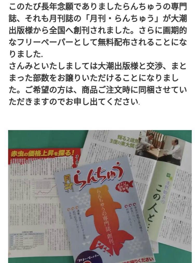 ◇『sakanの日常』月刊らんちゅうゲラ作り