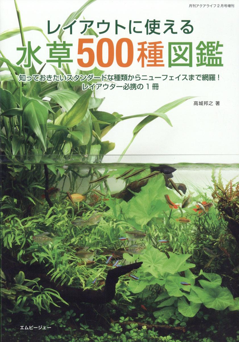 ◆レイアウト人気の中景水草アヌビアス バルテリーの注目品種。バタフライ、ダイヤモンド、スライプなど。