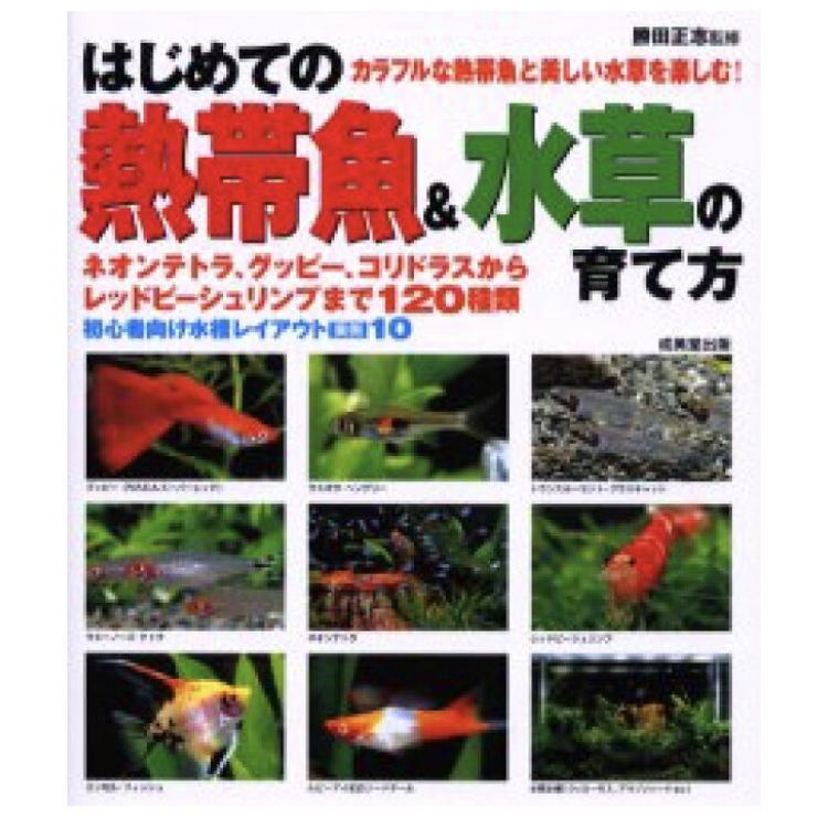 【アクアリウム本のご紹介】はじめての熱帯魚&水草の育て方